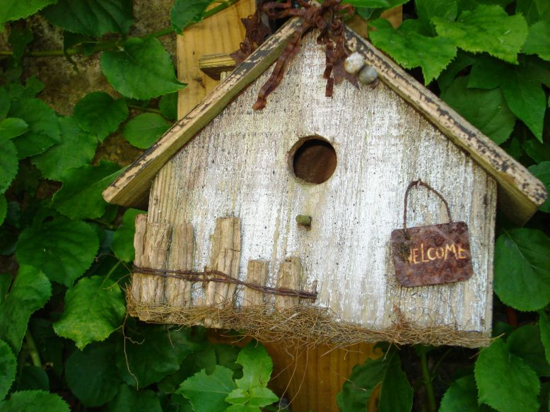 Bird House with Welcome sign
